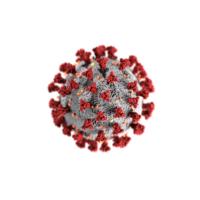 coronavirus negli uffici